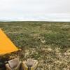 カナダ〜アラスカ旅169,170日目 デナリバックカントリー
