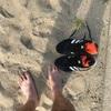 熱すぎて砂浜は走れません!