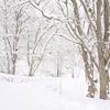 冬季営業について