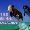 太地町役場は騙されている!福田礼(@fukupage)は犯罪者だ!なぜ当方が「鯨類の消費者運動」を立ち上げたか。