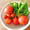 """畑からこんにちは! 0910   """" 総集編/第二弾・収穫まとめ   """"    初めてでも楽しめる家庭菜園!"""