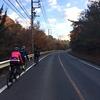 小原の四季桜と紅葉 100km