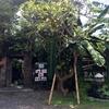 自然に囲まれながらのご飯@バリ!Cafe surrounded by rice fields!