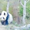 2020年最後のフォトレッスンは上野動物園でした