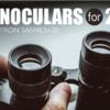 【品川ステラボール追記】2.5次元舞台に最も適した双眼鏡を見つけたかもしれない~SIGHTRON 双眼鏡 SAFARI 5×20~