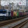 1月31日撮影 東海道線 平塚~大磯間 貨物2本とその他もろもろ