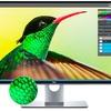 デル、「UP3218K」8K表示対応の31.5型ワイド液晶ディスプレイの国内販売を開始