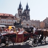 プラハは1日で観光可能か⁉1日で廻るおすすめスポットとモデルコース