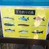 栃木県の那珂川水遊園は釣りも出来て楽しめました!釣りは釣り竿とエサ付で2時間500円!