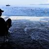 米海軍と海兵を楽しむことができる特別な休憩方法