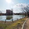 あおいの池(埼玉県行田)