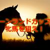キーンランドカップは牝馬を狙え!2016年注目の牝馬はこの2頭!