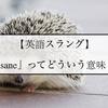 【英語スラング】『insane』ってどういう意味??