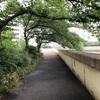 【詩の語録】「この道を通るとさ、Sちゃんとの思い出詰まるわー」