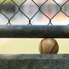 【プロ野球】中田翔選手の暴力問題の果てにあるケジメのつけかたとは