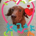 hikari369のブログ