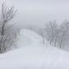 【野沢温泉スキー場で行方不明の男性遺体で見つかる】