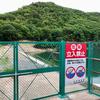 桜池(兵庫県神戸)