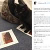 イギリスの財務省で『ネズミ捕獲長』の肩書きを持つ3歳の黒猫『グラッドストン』が一時行方不明に!大規模捜索の結果無事見つかる!!