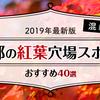 【2019年最新版】混雑しない京都の紅葉穴場スポットおすすめ40選