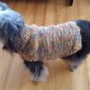 犬さんの手編みセーター