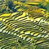 「世界遺産検定」文化的景観の世界遺産 その1