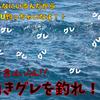 【フカセ釣り】湧きグレへの3つアプローチ 丁寧に釣り方を解説します