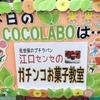 募集!! 第6回江口センセのガチンコお菓子教室 『アップルパイ』