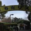 2歳7か月の娘と町田リス園へ〜開園すぐに行くといいよ