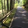 夏のお散歩Ⅱ