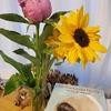 〈レポート〉4/28【対話付き上映】映画『あこがれの空の下』✖️書籍『きみがつくる きみがみつける 社会のトリセツ』〜「子どもが教育の主人公」はどのように実現できるか
