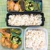作り置きおかずお弁当-11月24日(金)-水溶性食物繊維と不溶性食物繊維🕺