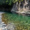 5月5日熊野川水系で水中撮影