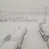 今日は悪天候 / ZARD コピーバンドBREZZA