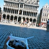 オランダ&ベルギー旅「気ままに過ごす快適旅!ブリュッセルの丘を下った先でワッフルをほおばる夏」