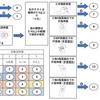 上田式12段階片麻痺機能検査をもっと簡単に!【パッと見でわかるフローチャート第2弾~手指編~】