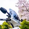 アドレスV125で振り返る桜の写真