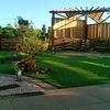メダカと芝生の庭
