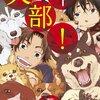 少年サンデーで『犬部!』新シリーズ開始!