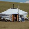 【モンゴル大統領選挙2017】各候補者の選挙公約(1)エンフボルド候補(モンゴル人民党)