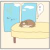 【猫漫画】毎朝飾られる謎の布