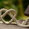 愛と縄と健康観察日記