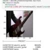 ウェブカメラの画像をVGG16で画像認識させる簡単サンプル