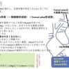 総動脈幹症(Persistent truncus arteriosus)について Rastelli手術について 疾患27