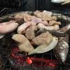旭川でホルモン食べるモン「塩焼きホルモンはるちゃん」