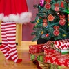 ロシアで暮らすハーフ娘・クリスマスとアイデンティティ