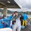 2020年10月30日 小浜漁港 お魚情報