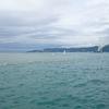 ジグパラのおすすめカラー 雨後に青物釣るなら絶対これ!!  Part2