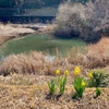 奈良川地区第二雨水調整池(神奈川県横浜)