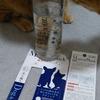 ペットの飲み水を体にやさしくするスティック【Magical Stick】導入しました